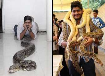 Karachi Brothers Having Pythons As Pet