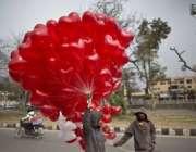 اسلام آباد: ایک محنت کش بچہ ویلنٹائن ڈے کی مناسبت سے غبارے فروخت کر ..