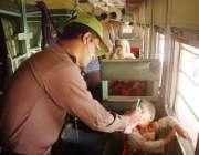 راولپنڈی، پولیو ورکر ریلوے سٹیشن پہنچنے والی ٹرین میں موجود بچوں کو ..