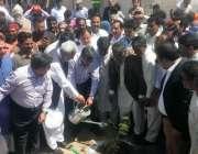 لاہور: رکن قومی اسمبلی پرویز ملک ویسٹ مینجمنٹ کمپنی کی شجر کاری مہم ..