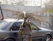 راولپنڈی، گیس کی عدم دستیابی کے باعث ایک خاتون لکڑیاں جمع کر کے لے جا ..