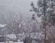 چترال میں برفباری کا ایک شاندار منظر۔
