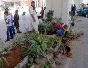 راولپنڈی: میٹروبس پراجیکٹ میں تباہ ہونے والی مری روڈ کو تیار کرنے کے ..