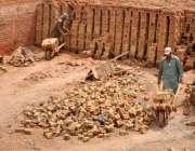 راولپنڈی: مزدوروں کے عالمی دن سے بے خبر نواحی علاقے میں واقع بھٹہ خشت ..