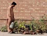 لاہور: الحمراء ہال کے صحن میں رکھے پودوں کو مالی پانی دے رہا ہے۔