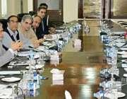 اسلام آباد: وفاقی وزیر خزانہ سینیٹر اسحاق ڈار نیلم جہلمج ہائیڈرو پاور ..