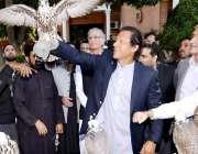 پشاور: چیئرمین پاکستان تحریک انصاف عمران خان سمگلنگ کی ناکام کوشش کے ..