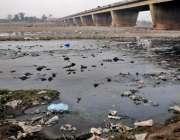 لاہور: دریائے راوی گندے نالے کا منظر پیش کر رہا ہے۔
