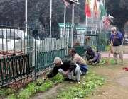 لاہور: ٹاؤن ہال کے ملازم پھولوں کی کیاری کو صاف کر رہے ہیں۔