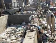 حیدر آباد: لطیف آباد نمبر 12 کی مصرف شاہراہ نہ صرف غلاظت سے اٹی پڑی ہے ..