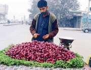احمد یار: ریڑھی بان انار پھلی فروخت کر رہا ہے۔