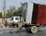 لاہور: ایک محنت کش گدھا ریڑھی پر لوہے کی بھاری الماریاں رکھے کینٹ روڈ ..