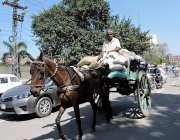 لاہور: ایک محنت کش تانگہ ریڑھے پر سامان لادھے اپنی منزل کی جانب جا رہا ..