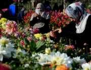 لاہور: ریس کورس پارک میں پھولوں کی نمائش کے موقع پر خواتین پھولوں کے ..