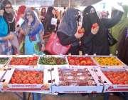 راولپنڈی: زرعی یونیورسٹی میں پوٹھوہار میں زرعی ترقی کے حوالے سے لگے ..