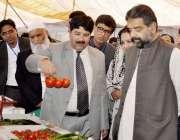 راولپنڈی: وفاقی وزیر سکندر حیات بوسن زرعی یونیورسٹی میں منعقدہ نمائش ..