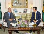 لاہور: گورنر پنجاب ملک محمد رفیق رجوانہ سے کوریا کے سفیر ڈاکٹر سونگ ..