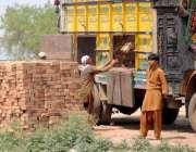 راولپنڈی: مزدور ٹرک سے اینٹیں اتار رہے ہیں ۔