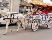 راولپنڈی: گھوڑا بگھی مڑی روڈ سے گزرتے ہوئے۔