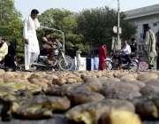 """لاہور: """"نہیں یہ روایت اچھی ۔۔۔۔۔۔ کبھی چوزوں کا قتل عام، کبھی سبزیوں .."""