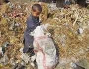 لاہور: ایک کمسن بچہ کوڑے کے ڈھیر سے کار آمد اشیاء تلاش کر رہا ہے۔