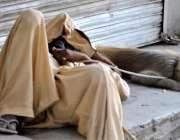 راولپنڈی: پھیری لگار کر کمائی کرنے والا ایک مداری دن بھر کی تھکن کے ..