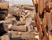 راولپنڈی: ایک معمر محنت کش ٹال پر لکڑیاں کاٹ رہا ہے۔