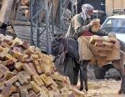 راولپنڈی: محنت کش گدھے پر اینٹیں رکھ رہا ہے۔