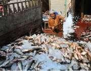 ملتان: محنت کش مچھلی کو تازہ رکھنے کے لیے اس پر برف ڈال رہا ہے۔
