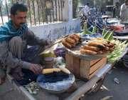 راولپنڈی: ریڑھی بان فروخت کے لیے کوئلوں پر چھلیاں بھون رہا ہے۔