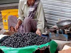 CHINIOT: An elderly vendor displaying the seasonal fruit to attract the customers at his roadside setup.