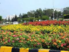 ISLAMABAD: A view of seasonal flowers flourishing and blooming on the centre greenbelt.