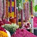 راولپنڈی: ایک دکاندار قبرستان کے باہر پھول فروخت کر رہا ہے۔