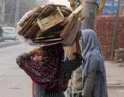 لاہور: ایک خاتون گھر کا چولہا جلانے کے لیے اکٹھی کی گئی لکڑیاں سر پر ..