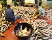 لاہور: مچھلی فروش مچھلی کی صفائی ستھرائی کے کام میں مصروف ہیں۔