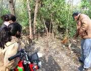 اسلام آباد: ایک شخص جنگلی بندر کو کھانے کے لیے چنے دے رہا ہے۔