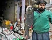 لاہور: مچھلی فروش گاہکوں کو متوجہ کرنے کے لیے بڑے سائز کی مچھلی اٹھائے ..