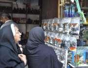 اسلام آباد: خواتین پلاسٹ کے لفافوں میں رکھی گئی مچھلیوں میں دلچسپی ..