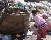 کوئٹہ: ایک بچی کچرے کے ڈھیر سے کار آمد اشیاء تلاش کر رہی ہے۔