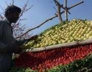 لاہور: ایک ریڑھی بان گاہکوں کو متوجہ کرنے کے لیے تازہ پھل سجا رہا ہے۔