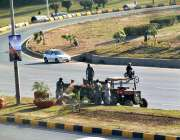 اسلام آباد: وفاقی دارالحکومت میں سی ڈی کے اہلکار پودوں کی دیکھ بھال ..