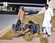 اسلام آباد: وفاقی دارالحکومت میں سی ڈی اے کے اہلکار گرین بیلٹ پر گھاس ..