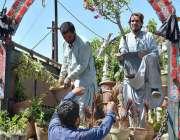 کوئٹہ:مزدور ٹرک سے پودے اتار رہے ہیں جو نرسری میں فروخت کے لیے لائے ..