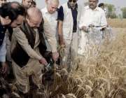 اوکاڑہ: وزیر اعظم نواز شریف شیر گڑھ میں گندم کٹائی کے افتتاح کے بعد ..