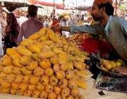 حیدر آباد: صوبائی وزیر داخلہ سندھ سہیل انور سیال صوبائی وزیر رٹرانسپورٹ ..