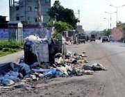 اسلام آباد: چک شہزاد روڈ پر گندگی کے ڈھیر کے باعث بدبو سے مختلف بیماریاں ..