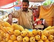 اسلام آباد: سستے رمضان بازار میں ایک دکاندار فروخت کے لیے آم سجا رہا ..