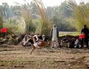 اٹک: موسی خان میں کبڈی کے میچ کا منظر، دیہی عوام کو تفریح فراہم کرنے ..