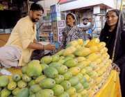حیدر آباد: فروٹ مارکیٹ میں خواتین افتاری کے لیے آم خرید رہی ہیں۔