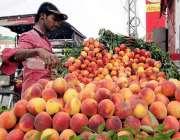 لاہور: ایک محنت کش نے گاہکوں کو متوجہ کرنے کے لیے آڑو ریڑھی پر سجا رکھے ..